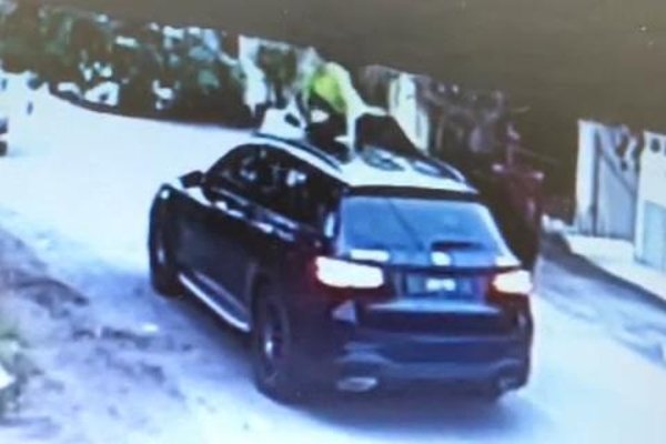 Cheapskate aunties climb on Mercedes-Benz GLC to steal mangoes